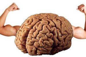 Beynimiz Bilgileri Nasıl İşliyor ? 7