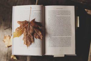 Günde Bir Kitap Nasıl Okunur?