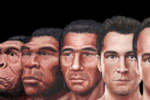 Modern İnsanların Evrimi 9