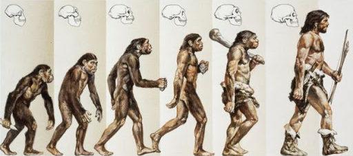 Modern İnsanların Evrimi 2