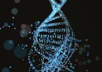 DNA nedir? 1