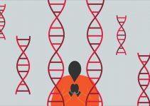 İngiltere Ulusal DNA Veritabanı nedir?