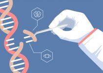 Genetik mühendisliği nedir? 5
