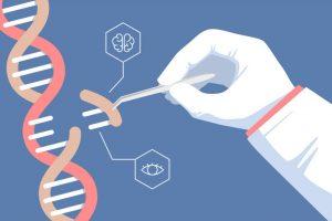 Genetik mühendisliği nedir? 7
